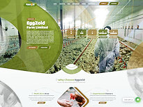 hyip Eggzoid Farm Ltd