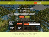 hyip Forest capital club